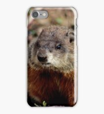Groundhog II iPhone Case/Skin