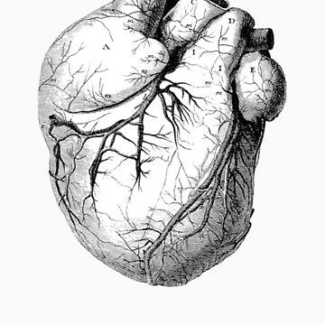 heart von mickaelcorreia