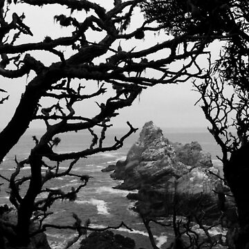 #989  A View From Point Lobos State Park - Carmel, Ca. by MyInnereyeMike
