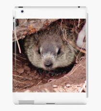 Groundhog III iPad Case/Skin