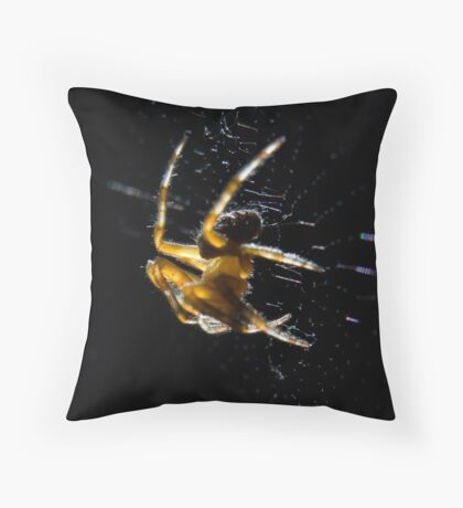 Brown spider close-up 2 Throw Pillow
