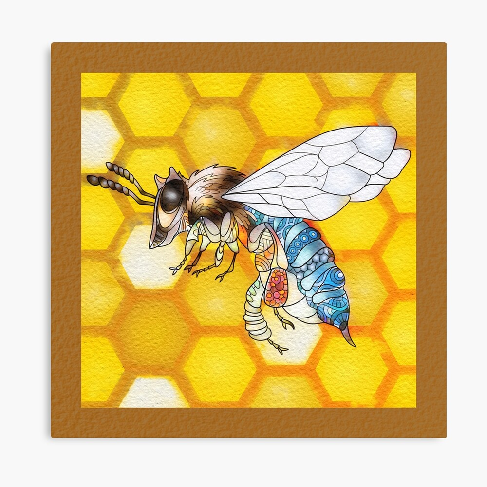 Blue Banded Bee Canvas Print