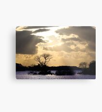 Lovely Sunset Metal Print