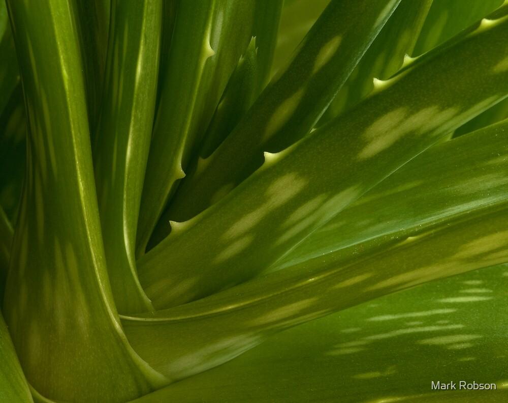 Aloe Vera by Mark Robson