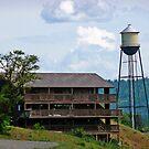 Post Falls Water Tower by Tamara Valjean