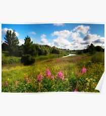 River bank's flower meadow Poster