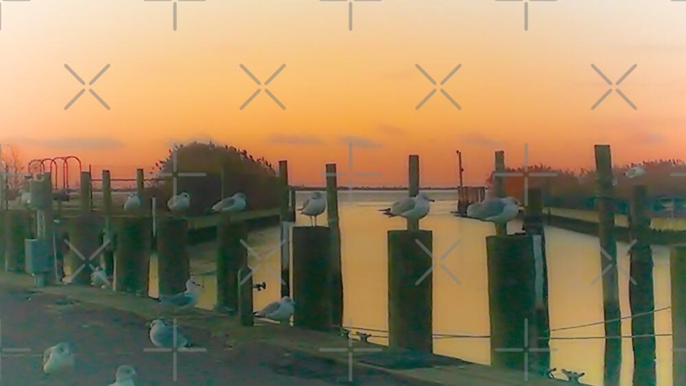 Sunrise Sentinels by NorthOfSunrise