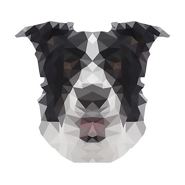 Animal Abstract Design - Border Collie by shirtsales24