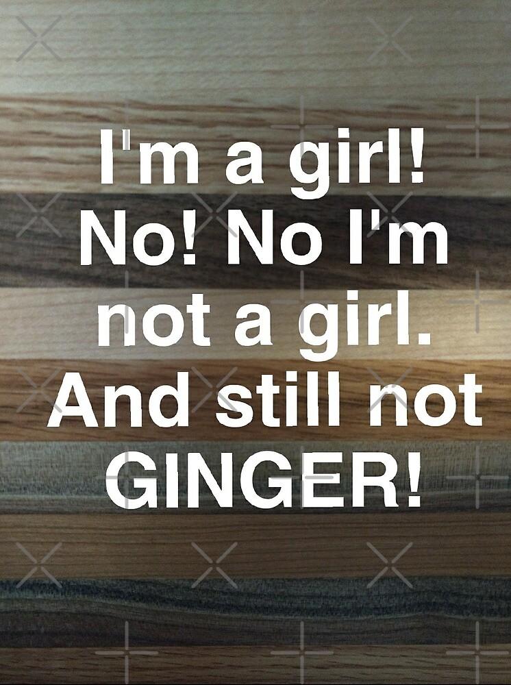 Still Not Ginger! by Ari Lauren