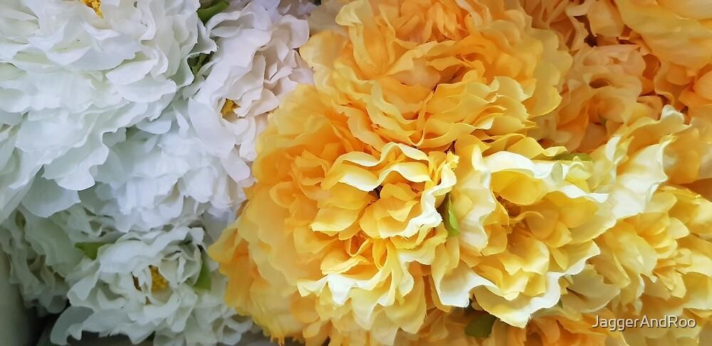Yellow Dahlias by JaggerAndRoo