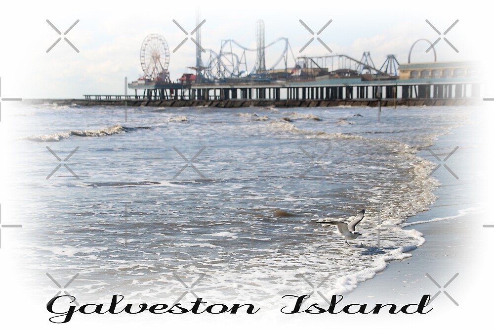 Galveston Island Pleasure Pier by Jayhawkgirl