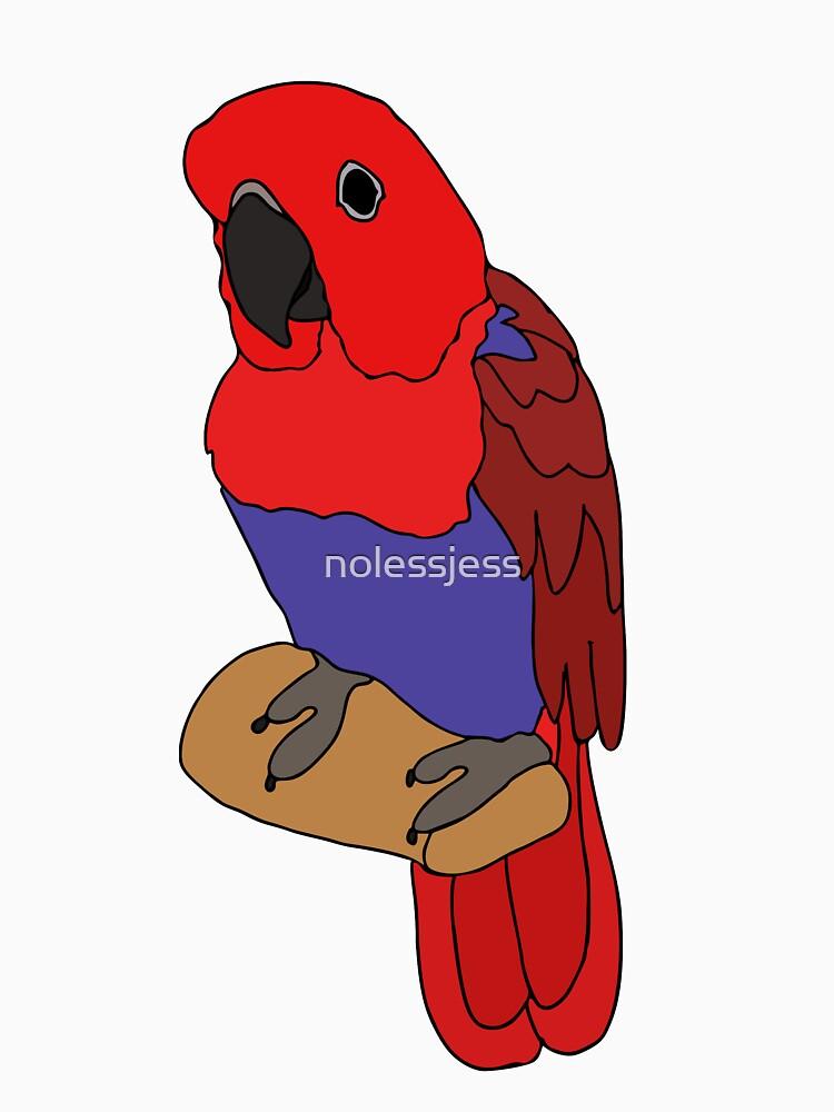 Eclectus Parrot by nolessjess