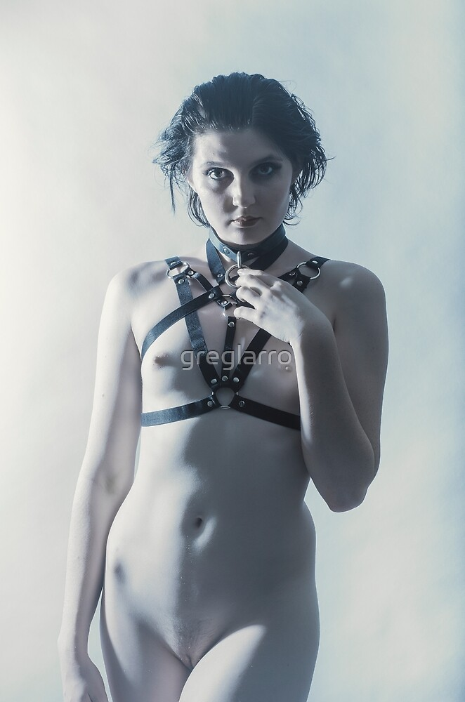HarlequinArts - Cold Harness 5 by greglarro