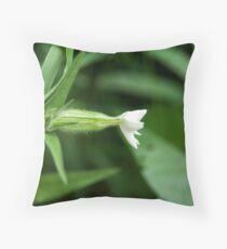 White Campion (Silene pratensis) Throw Pillow