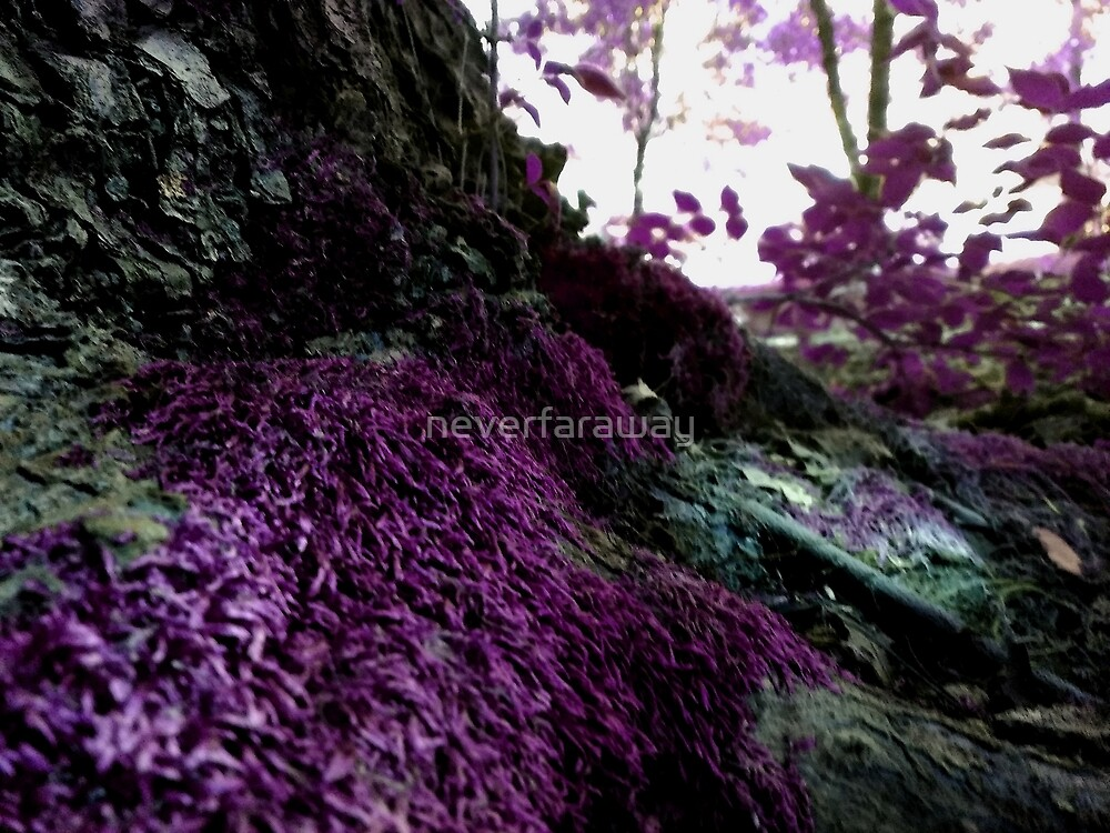 Summer Moss Purple by neverfaraway