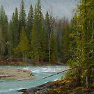 Lardeau River 1 by Larry Kohlruss