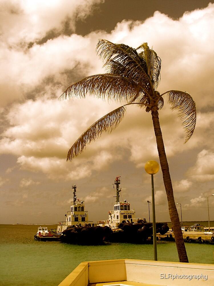Bonaire, Dutch Antilles by SLRphotography