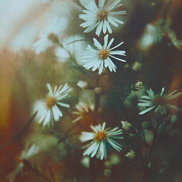 Dreaming Away  by EmiBlackBox