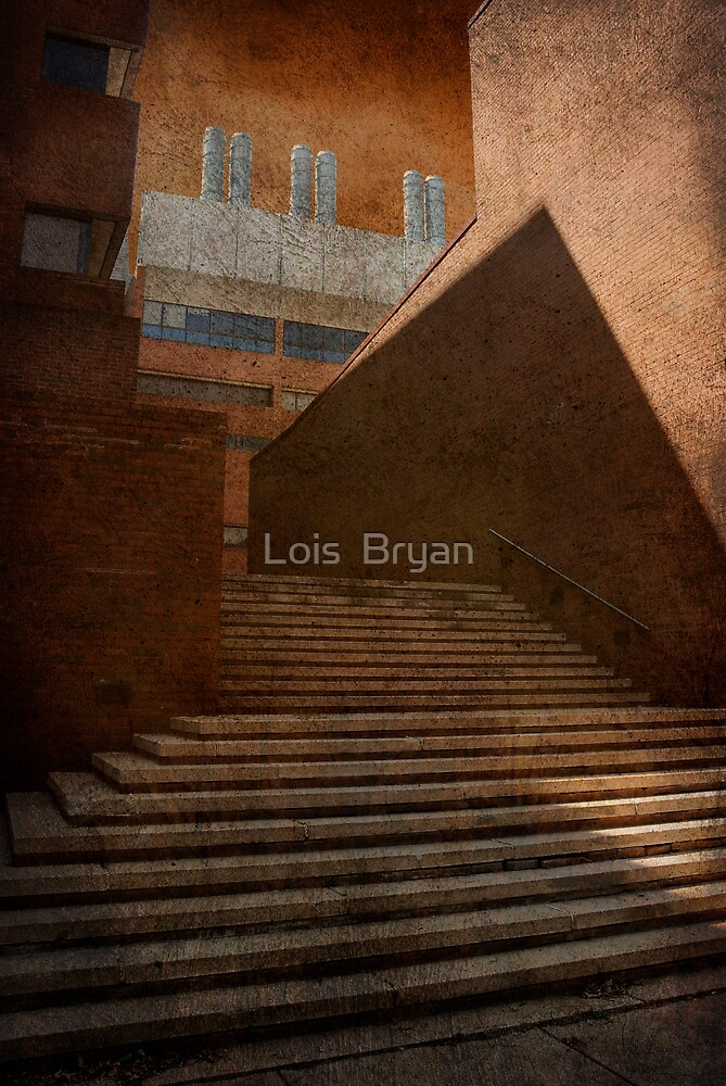 Higher Learning  by Lois  Bryan