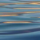 Lights on the Water by Menega  Sabidussi