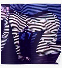 zebra daze Poster