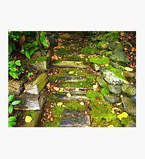 The Rocky Pathway Photographic Print