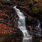 falls in autumn by codaimages