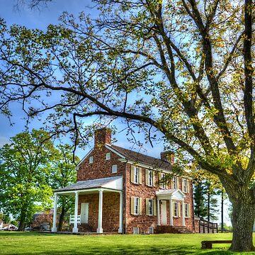 Ben Lomond House by lookherelucy