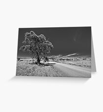 Bonnie Parker Road Greeting Card