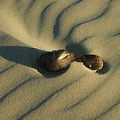 Beach Art by Mark Robson