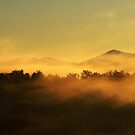 morning mists in the mountain by patrick pichard