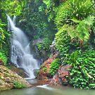 The beautiful Elabana Falls by Michael Matthews