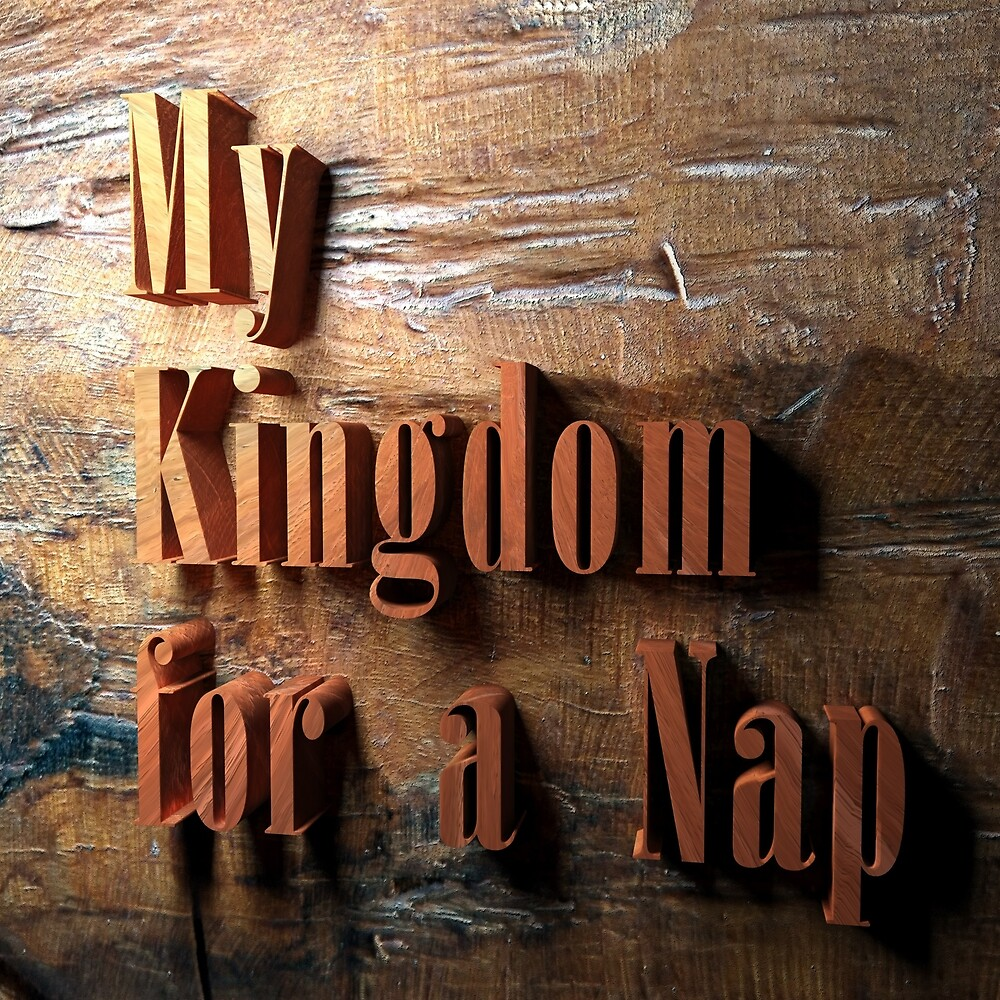 My Kingdom for a Nap by Mike Healy