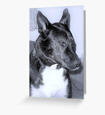 Tuxedo Hound Greeting Card
