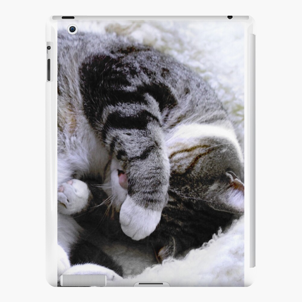 Sonntag Nachmittag Snooze iPad-Hüllen & Klebefolien