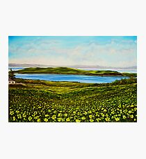 """Buttercups - view of Hog Island"" - oil painting Photographic Print"
