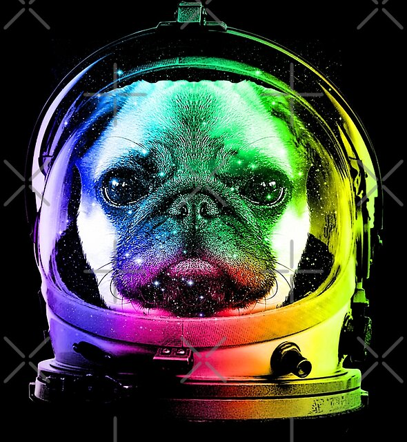 Astronaut Pug by clingcling