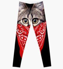 Gangster Cat Leggings