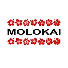 Molokai Red Flower Bands Color-Light by TinyStarAmerica