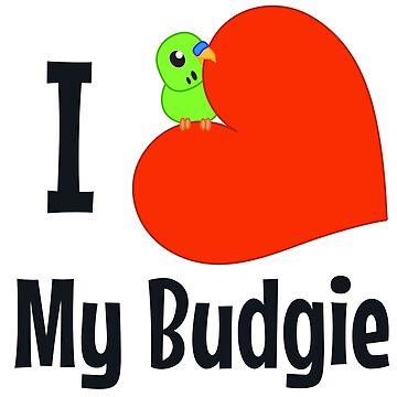I Heart My Budgie by parakeetart