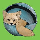 Fox in a bowl. by Graham Cooling