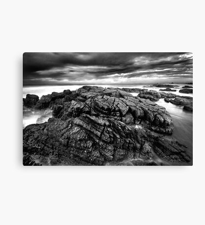 Contrasts Canvas Print