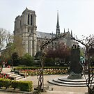 Spring in Paris: Notre-Dame and Viviani Square by Elena Skvortsova