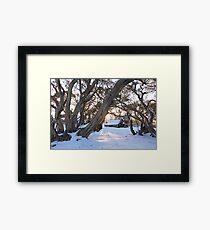 Wallace Hut Dawn, Falls Creek, Victoria, Australia Framed Print