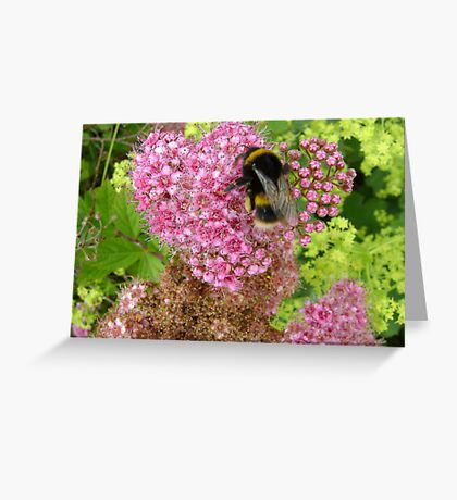 bee loved Greeting Card