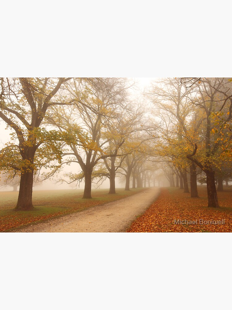 Autumn Fog, Daylesford, Victoria, Australia by Chockstone