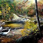 After the Rain at Wilson Creek  by Miles Moody