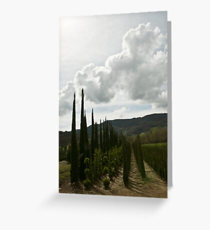ordered variety Greeting Card