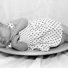 2 weeks old by Rosina  Lamberti