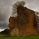 Lithgow Blast Furnace by Rosalie Dale
